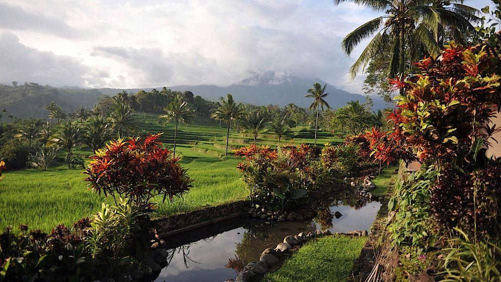 Rundreise Indonesien, Garten mit Ausblick, Ijen Resort & Villas, Banyuwangi, Indonesien