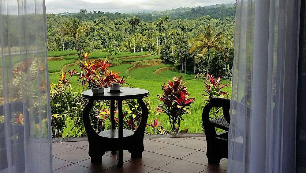 Privatreise Indonesien, Terrasse, Ijen Resort & Villas, Banyuwangi, Indonesien